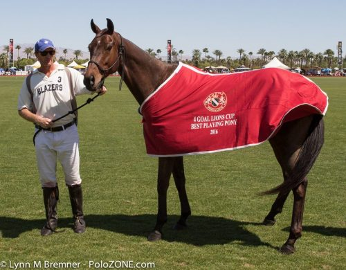 "Kyle Fargey's mare ""Macarena"" won Best Playing Pony in the USPA 4-Goal Lions Cup."