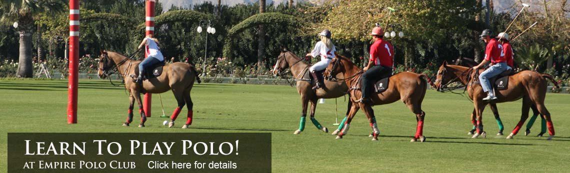 Polo School